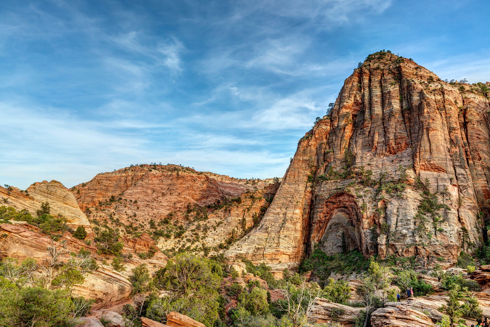 A Different View at Zion's Canyon Overlook