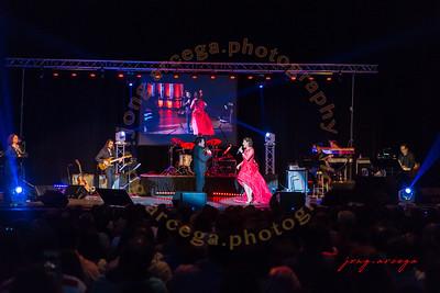 2017 Martin Nievera and Lani Misalucha Concert I