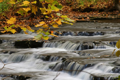 Corbett's Glen - October 19, 2010