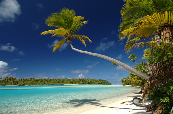 Sun, Sand, and Blue Water