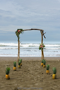 Costa Rican Wedding Arch