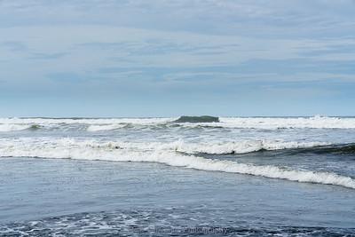 Misted Coast