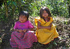 """Barefoot Tican niñas - which I would say there is some indigenous """"Amerindian"""" within these little girl's blood veins - I would guess Bribri - since this area was just a couple of miles from the Panama border on the Caribbean Sea side."""