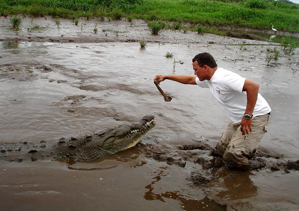 Hand-feeding a Croc on the Rio Tarcoles - with a heron feeding along the distal shore - near the village of Capulin - Puntarenas province (north)