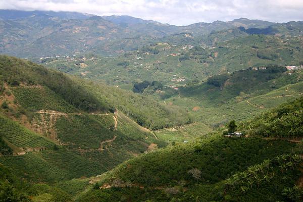 Zona de los Santos (Zone of the Saints) - coffee region near towns of San Marcos, San Pablo, and Santa Maria - the north-central area of the San Jose province - northwestern end of the Cordillera de Talamanca (mountains)