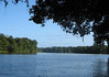 Lagunas del Tortuguero (Turtle Region Lagoon) - where the mountain waters from the Cordillera Central (Central Range Mountains) forms brackish waters from the Caribbean Sea - located in the Limon Province - Caribbean Sea