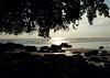 Playa Uvita - Marine Whale National Park - Puntarenas province