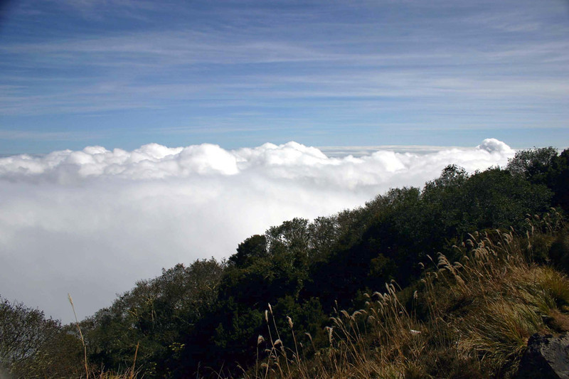 Along the eastern ridge of the Volcan Turrialba, above the stratus clouds - in the Turrialba Volcano National Park - Cartago province