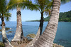 Coconut Palms (Cocos nucifera) - at Punta Salsipuedes - viewing northwestward along the La Leona Trail - Corcovado National Park - Osa Peninsula - Puntarenas province