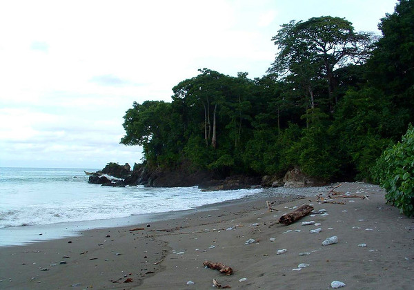Cabo Matapalo (Cape Strangler Fig) - the southernmost headland tip of the Osa Peninsula - where the Pacific meets the Dulce Golfo (Sweet Gulf) - Puntarenas province
