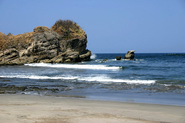 Playa Nosara - to Punta Roca (extreme southern section of beach) - where the Pacific surf meets the succulent cacti - Nicoya peninsula - Guanacaste province