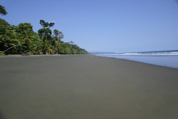 Playa Carate - viewing southeastward along tropical rainforest  - along the La Leona Coastal Trail - Corcovado National Park - to Cabo Matapalo (the southernmost headland tip, of the Osa Peninsula - Puntarenas province