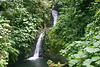 Catarata El Rio (River Water Fall) - Monteverde Cloud Forest Reserve - Puntarenas province