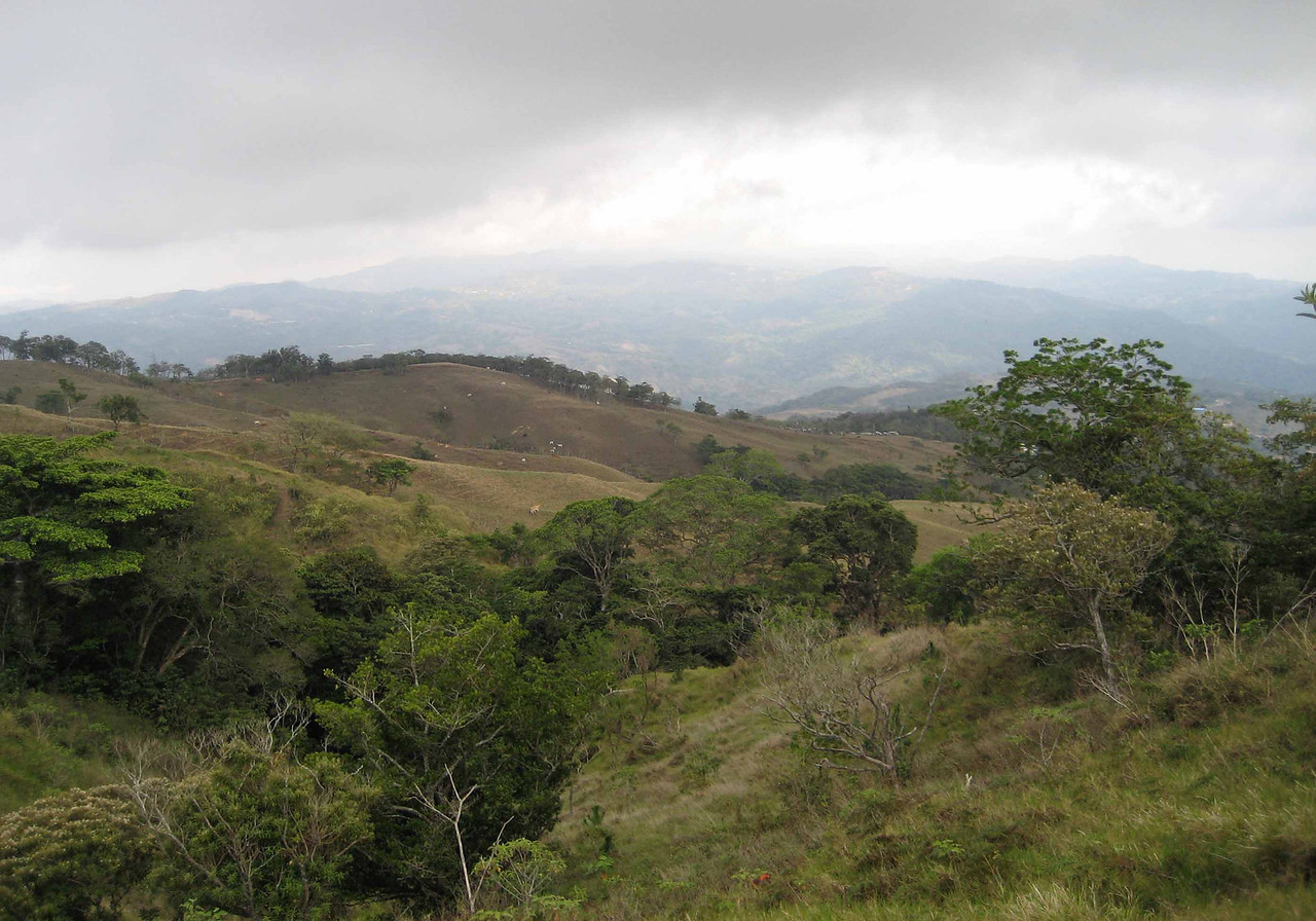 contrast in private land ownership (beef-after) -- most of the adjacent properties have been deforested and are dedicated to cattle ranching.  those mountaintops are largely denuded, and the contrast in biodiversity is striking.