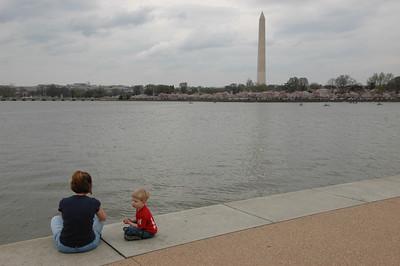 050407 2708 USA - Washington DC - Cherry Blossoms _D _E _I ~E ~L
