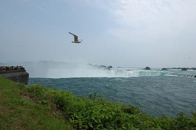 050628 5851 Canada - Toronto - Niagara Falls _E _I _L ~E ~L