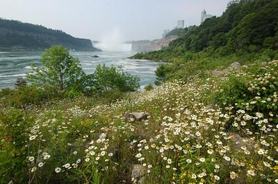 050628 5684 Canada - Toronto - Niagara Falls _E _I _L ~E ~L