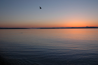 050416 3003 Canada - Victoria - Agate Lane Sunrise _I ~E ~L
