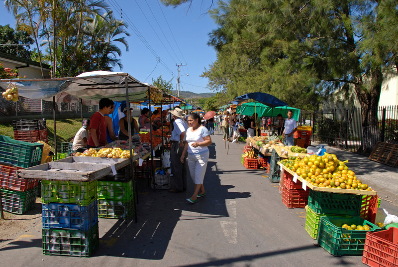 080112 9178 Costa Rica - Ciudad Colon - Brasil de Mora and envrions _L ~E ~L