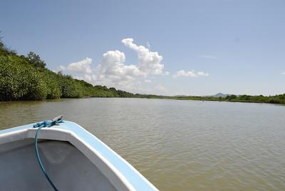 080119 9503 Costa Rica - Manuel Antonio - Mangroves Boat Tour _E _L _G ~E ~L
