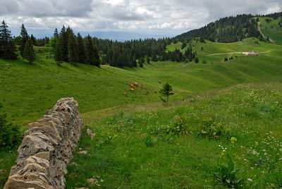 070626 7047 Switzerland - Geneva - Downtown Hiking Nyon David _E _L ~E ~L