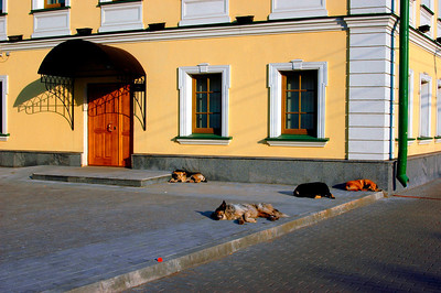 040818 0099 Moscow - Taganskaya Square A Dogs Life _J _G ~E ~L