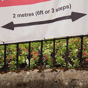 Planting instructions Lyme Regis by Andy White
