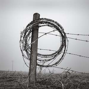 Barbed wire, Springbank, AB