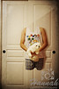 Headless and Legless Boy floating and carrying a Maltese puppy<br /> Trick Photography and Special Effects<br /> <br /> © Copyright Hannah Pastrana Prieto