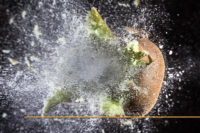 Exploding Kiwi