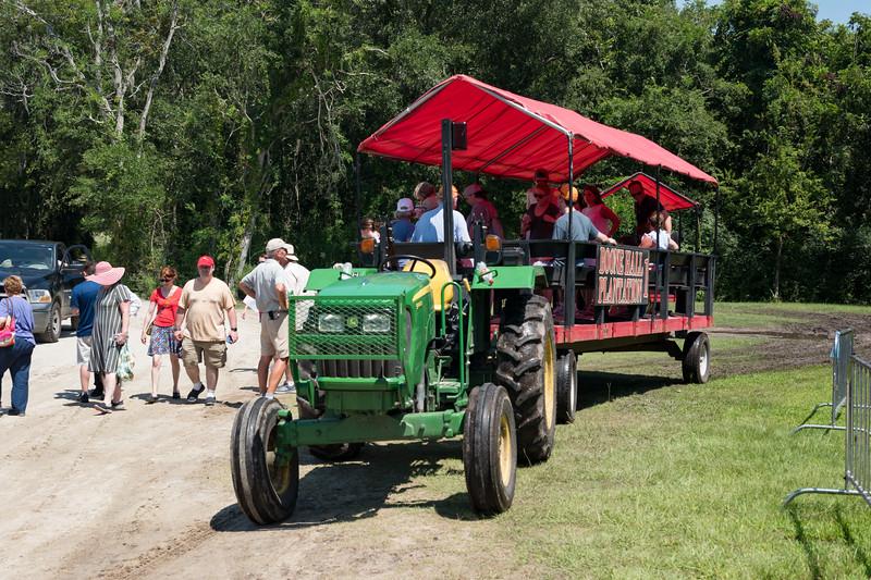 Boone Hall Plantation's open air tour ride