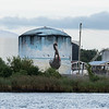 Pelican Tank by the Cape Fear River near downtown Wilmington