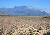 Sierra Menchaca - and Cerro del Muerto (Hill of the Dead), at the southwestern end of mountain - just east of ciudad de Cuatro Cienegas de Carranza.