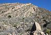 Up the sedimentary limestone bajada of the  Sierra San Marcos.
