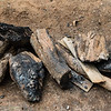 Burned firewood, a reminder of a good meal