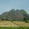 Landscape of corn fields and mountain