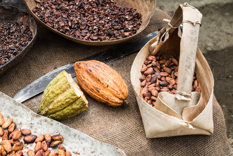 Cacao beans in various stages of roasting at a farm near Baracoa