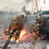 Roasting pigs over open fire