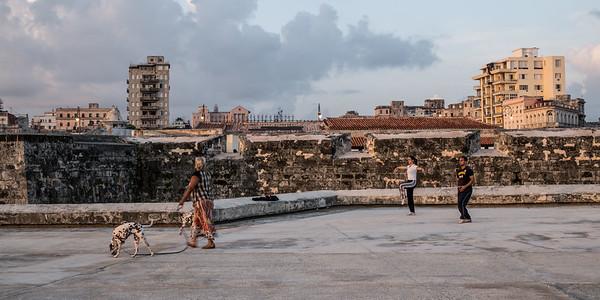Tai chi and dog walker, Havana Malecon