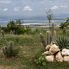 Landscaping of cacti and stones on a hill near Santiago de Cuba