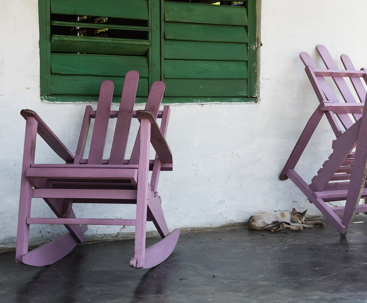Two old purple Adirondack chairs