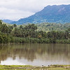 View of the Toa river with El Yunque montain in the background. Near Baracoa