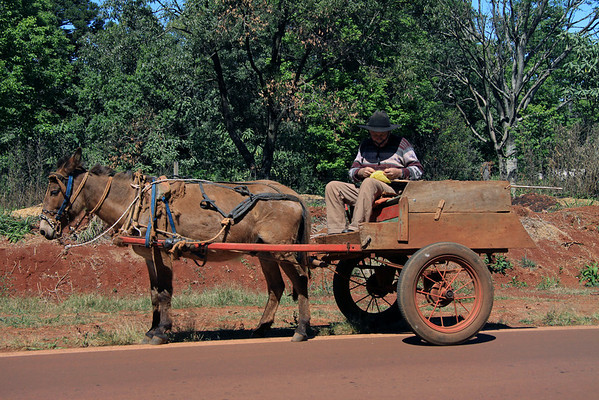 Roadside repair - using a fishing line to tie a plastic bag onto end of a cane pole which he uses to guide/direct his horse - Guarani Department, in the Misiones Province of Argentina