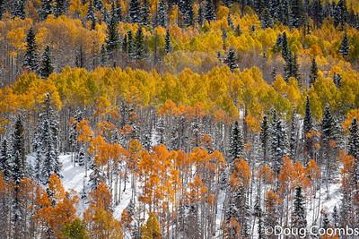 Wolf Creek Pass, CO