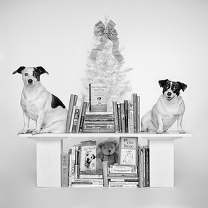 'Bookends'