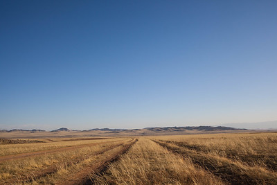 Find the best way, Mongolia