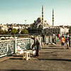 Fishing session, Istanbul (Turkey)
