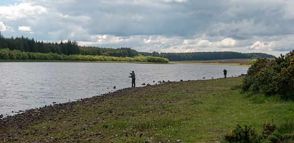 Glencrewan Lough Fermanagh STOCKED
