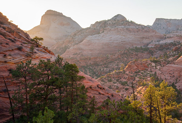 The rugged eastern canyons of Zion National Park in Utah.
