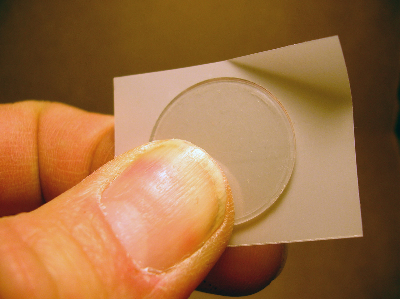 Front Lens and Diffusing vellum, to be cut to size.  Adds a lot of diffusion and evens-out the distribution of the light